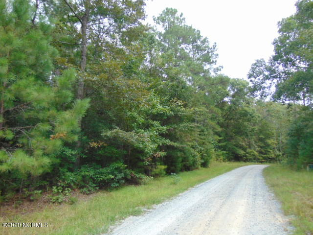 10.4 Acres Ruffin Lane, Supply, North Carolina 28462, ,Undeveloped,For sale,Ruffin,100206102