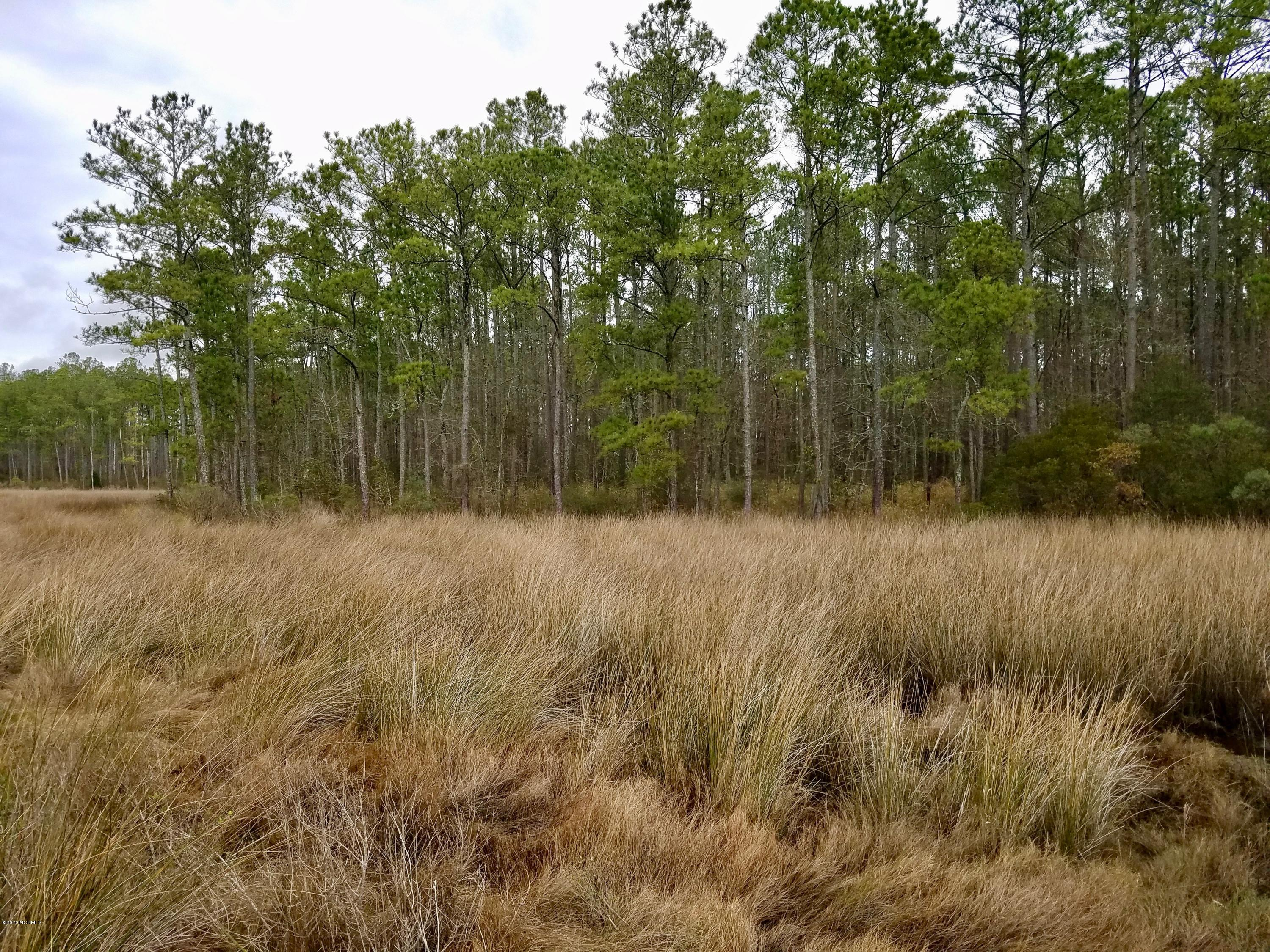 116 Pitch Kettle Court, Belhaven, North Carolina 27810, ,Residential land,For sale,Pitch Kettle,100206283