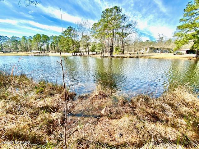 Lot 13, 14 Lakeview Drive, Elizabethtown, North Carolina 28337, ,Residential land,For sale,Lakeview,100207443