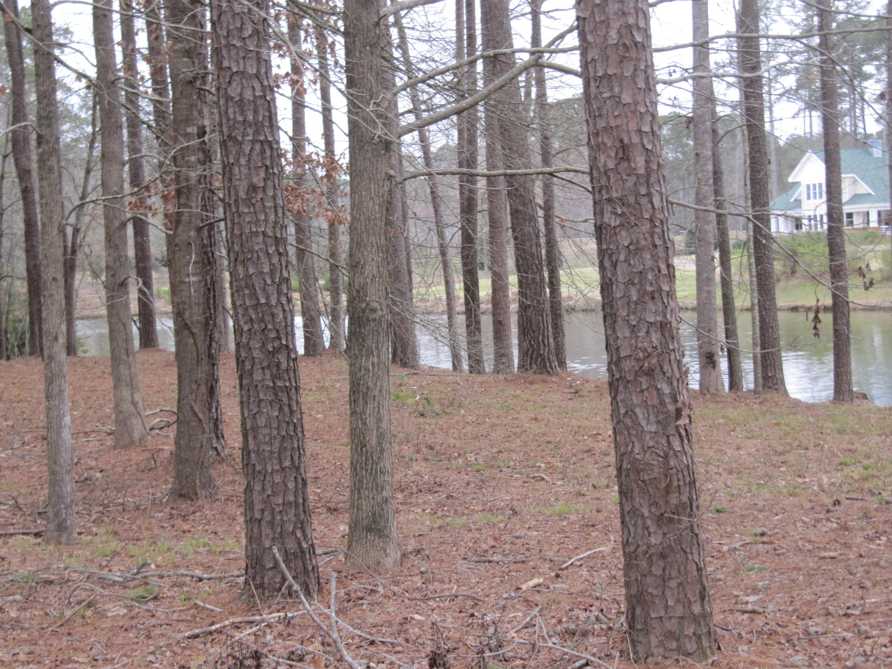 Lot #30 Tar Lane, Chocowinity, North Carolina 27817, ,Residential land,For sale,Tar,100207697