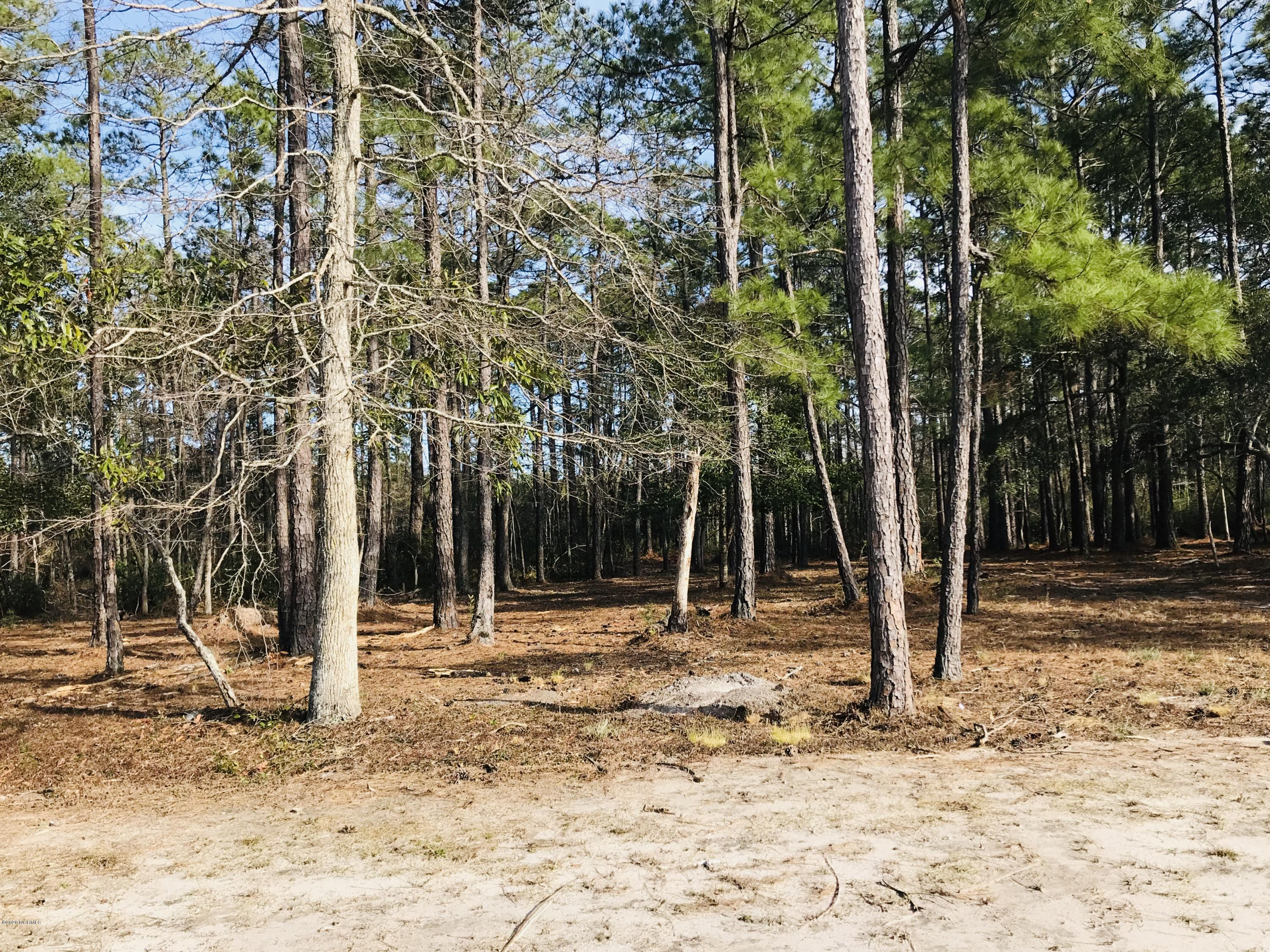 6764 Holton Place, Ocean Isle Beach, North Carolina 28469, ,Wooded,For sale,Holton,100208220