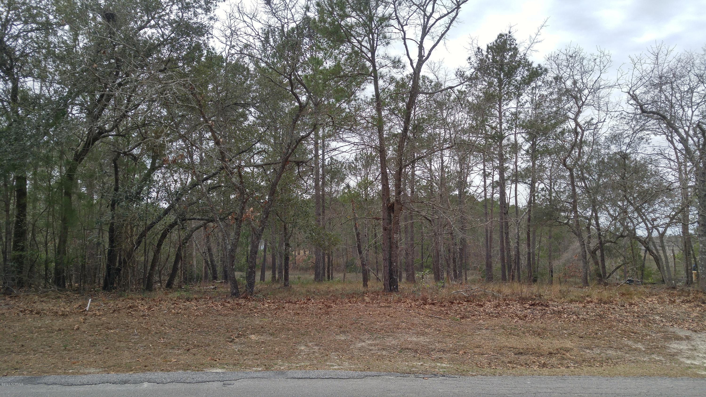 3057 River Hills Drive, Shallotte, North Carolina 28470, ,Residential land,For sale,River Hills,100208518