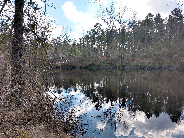 0000 Hwy 53, Burgaw, North Carolina 28425, ,Residential land,For sale,Hwy 53,100208849