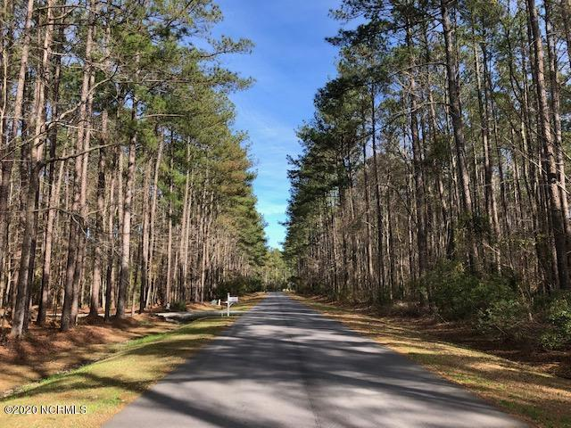 34 Spicers Creek Drive, Oriental, North Carolina 28571, ,Residential land,For sale,Spicers Creek,100209389