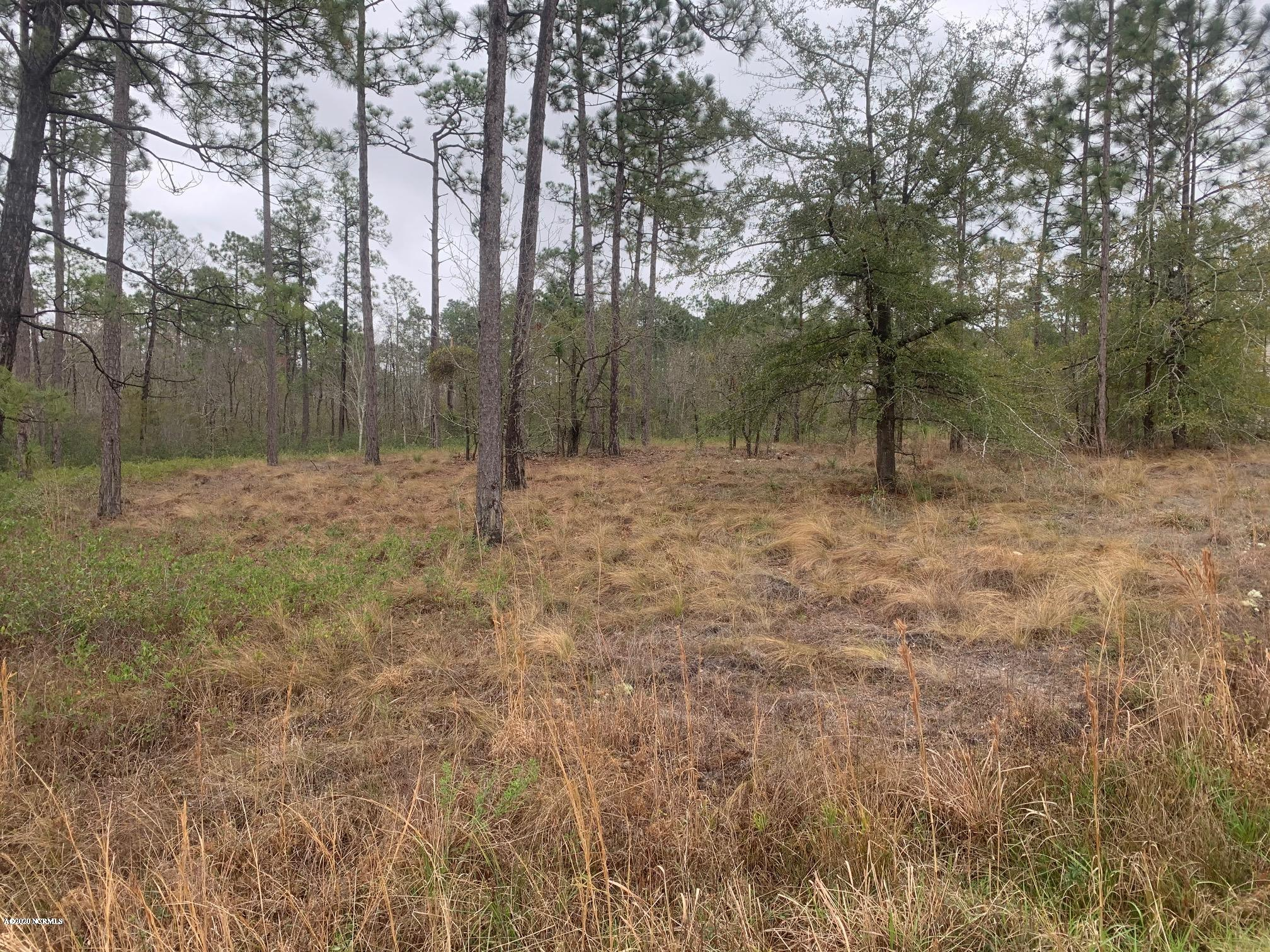 1992 Boiling Spring Road, Boiling Spring Lakes, North Carolina 28461, ,Residential land,For sale,Boiling Spring,100209744