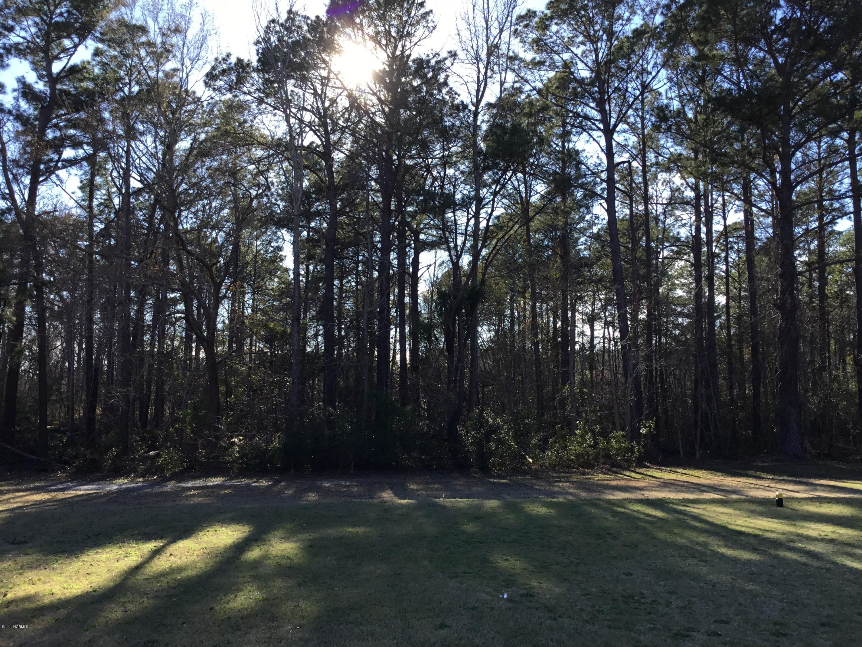 301 Country Club Drive, Minnesott Beach, North Carolina 28510, ,Residential land,For sale,Country Club,100209743