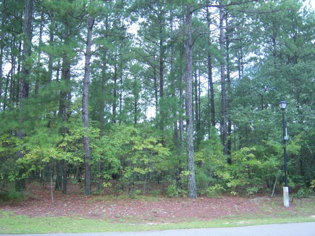 44 Loblolly Court, Wagram, North Carolina 28396, ,Residential land,For sale,Loblolly,100210041