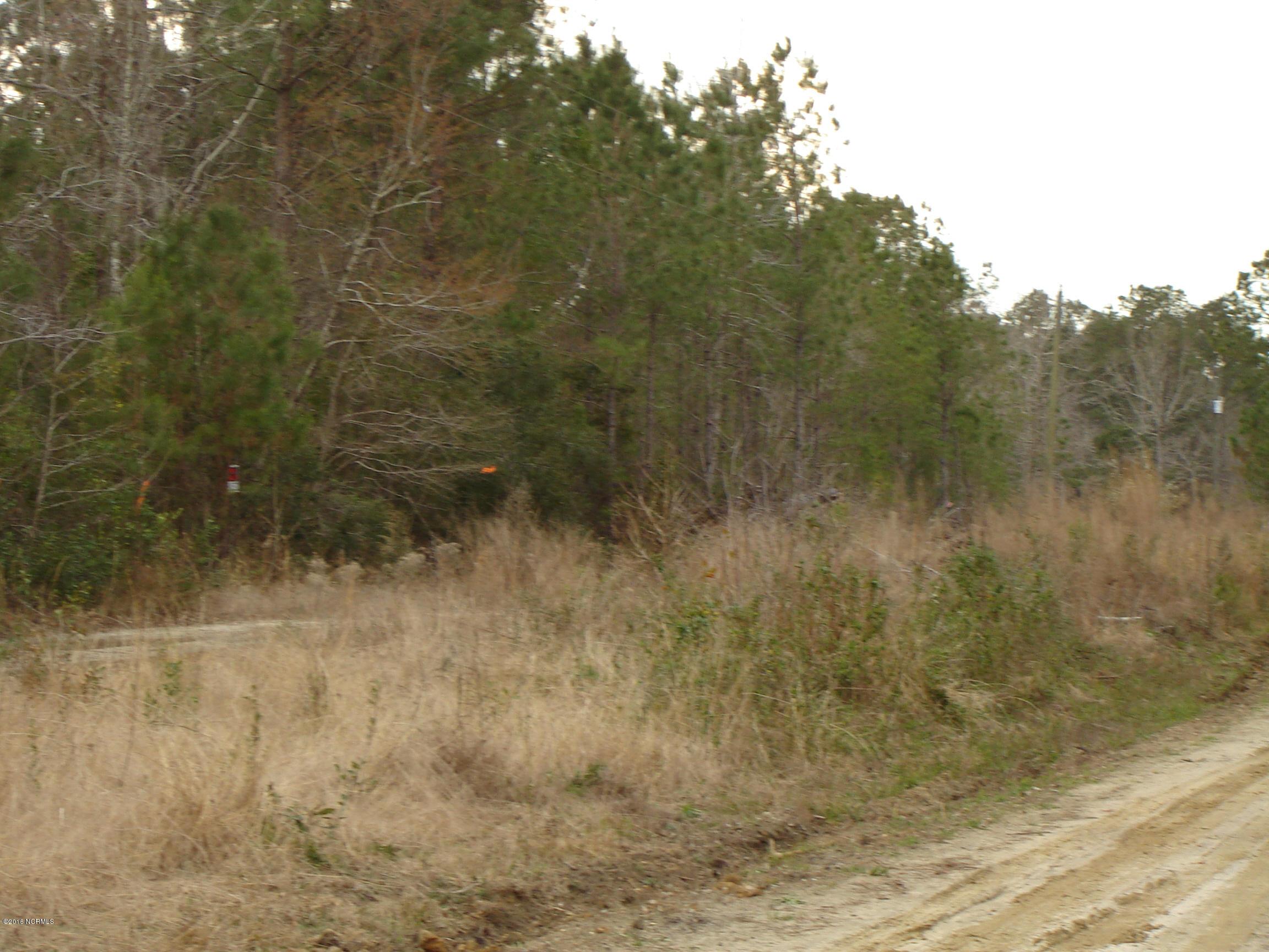 4 Sawdust Lane, Winnabow, North Carolina 28479, ,Residential land,For sale,Sawdust,100210691