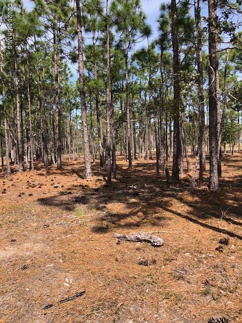 6806 Beckman Circle, Ocean Isle Beach, North Carolina 28469, ,Residential land,For sale,Beckman,100210880