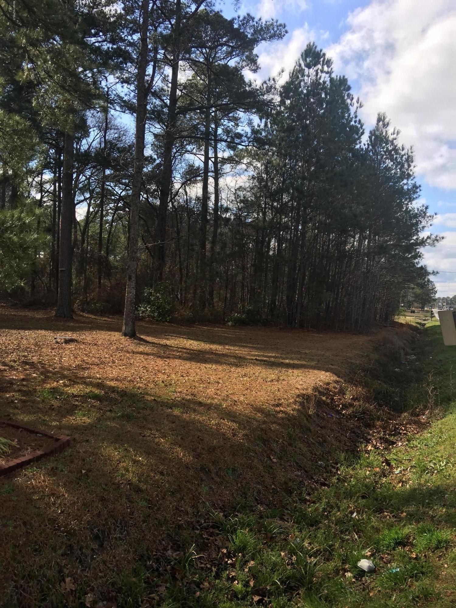 82, 84, 85, 8 New Hope Road, Goldsboro, North Carolina 27530, ,Residential land,For sale,New Hope,100211133