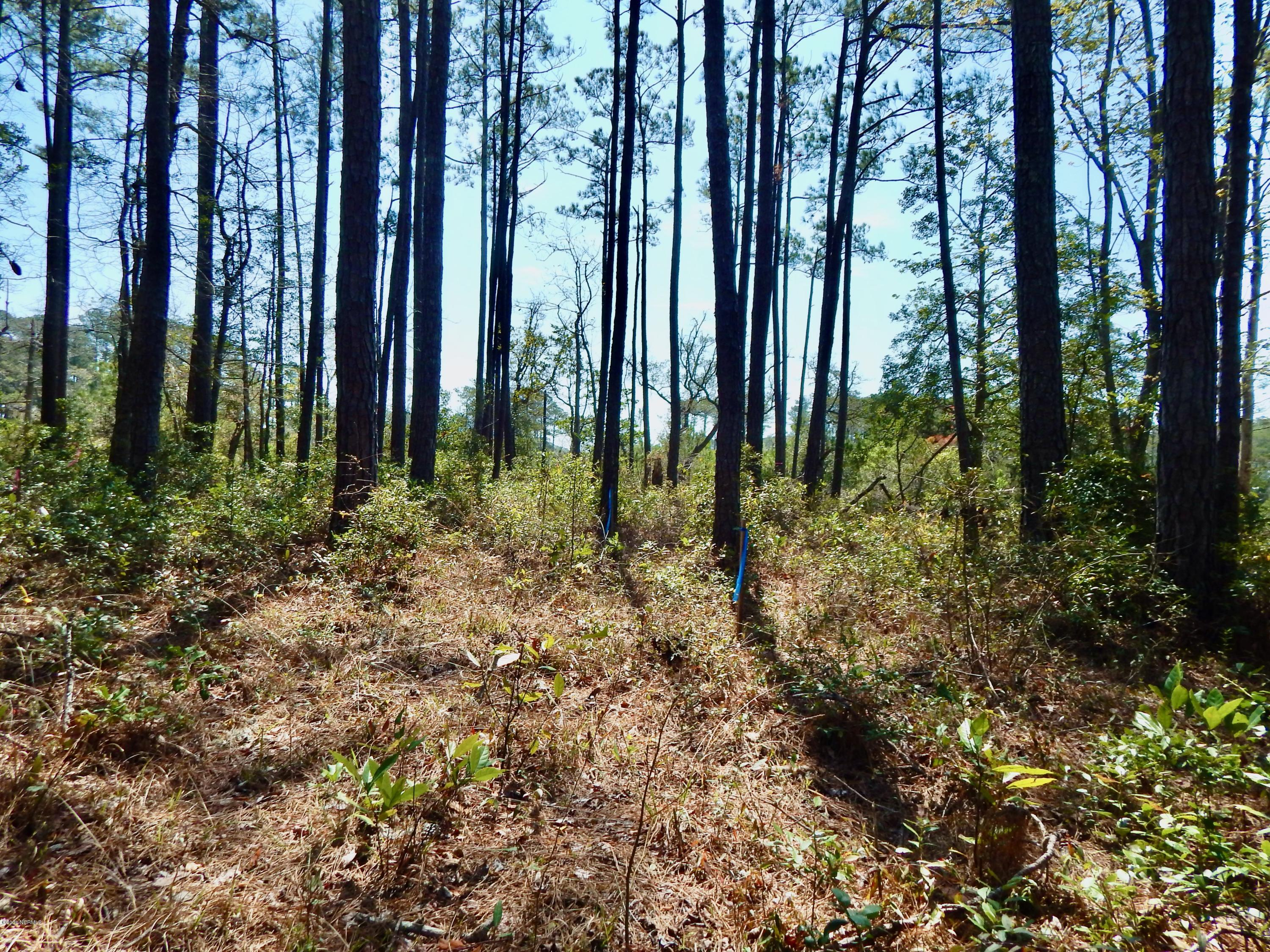 111 Queen Annes Lane, Beaufort, North Carolina 28516, ,Residential land,For sale,Queen Annes,100211347