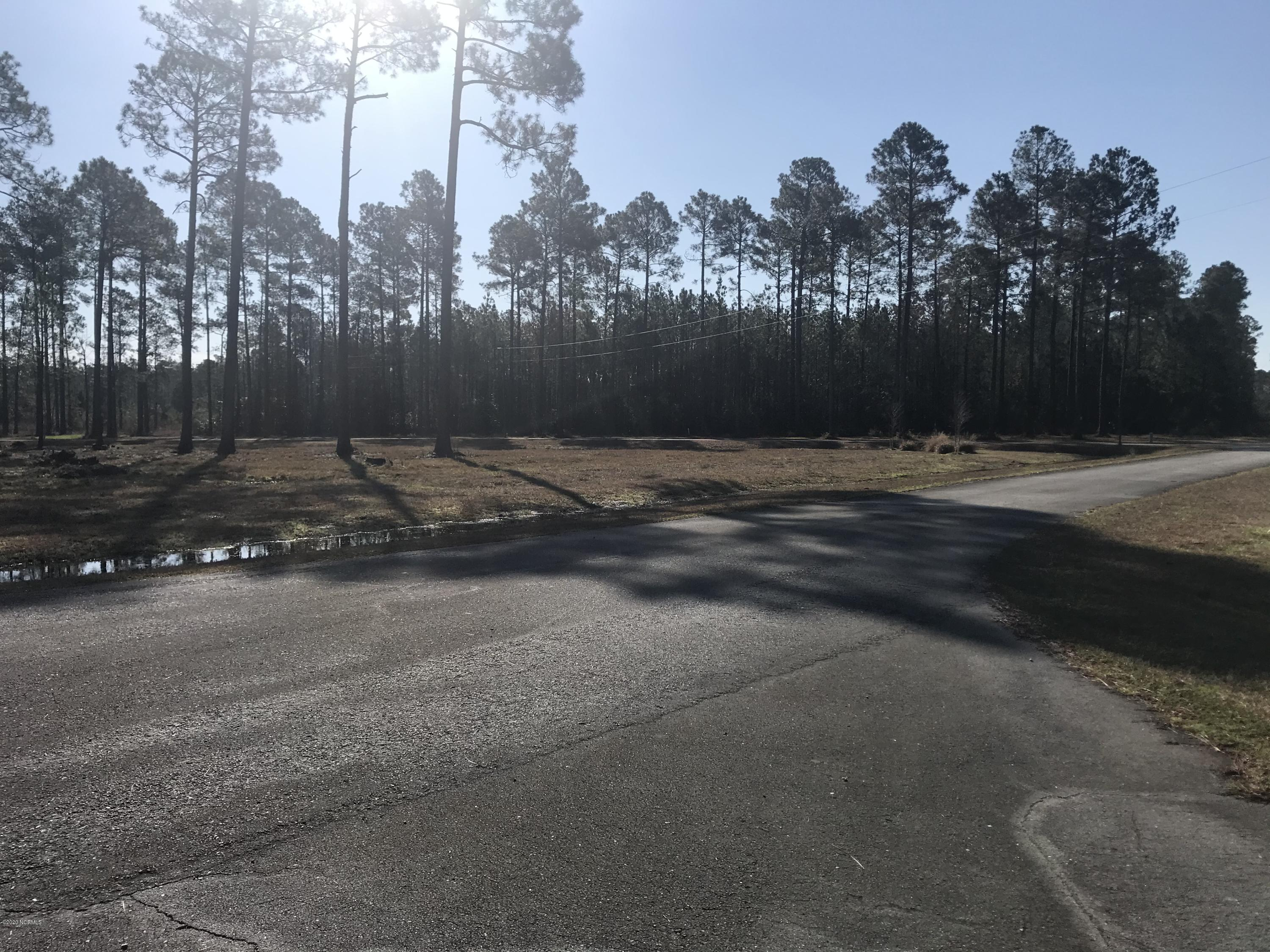 305 Paradox Point Drive, Aurora, North Carolina 27806, ,Residential land,For sale,Paradox Point,100211452