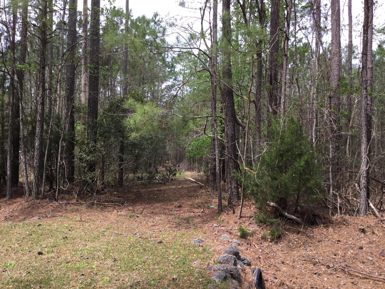 131 Arnetta Way, Oriental, North Carolina 28571, ,Residential land,For sale,Arnetta,100212128