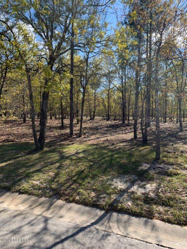 2929 Serrano Trail, Bolivia, North Carolina 28422, ,Residential land,For sale,Serrano,100212038