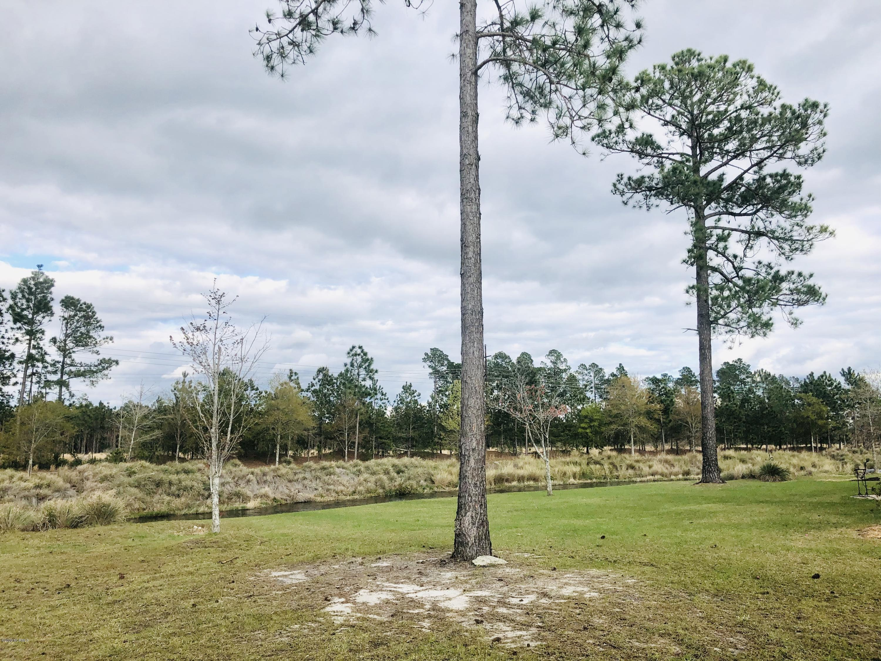 1269 Lillibridge Drive, Leland, North Carolina 28451, ,Residential land,For sale,Lillibridge,100211793