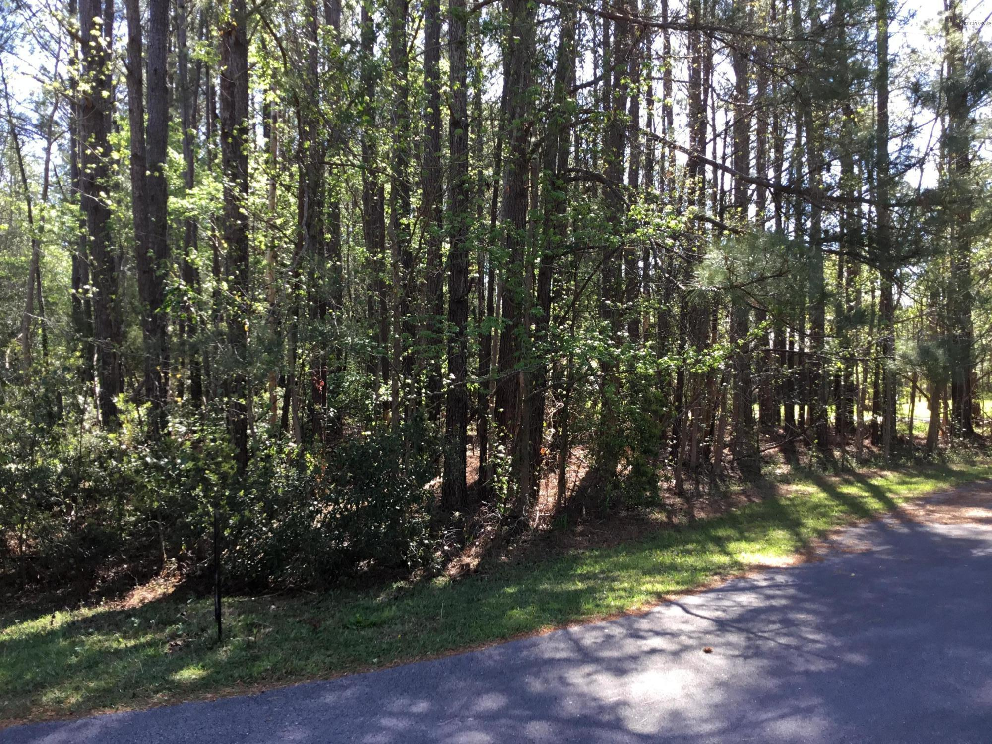 93 Mallard Drive, Merritt, North Carolina 28556, ,Residential land,For sale,Mallard,100212349
