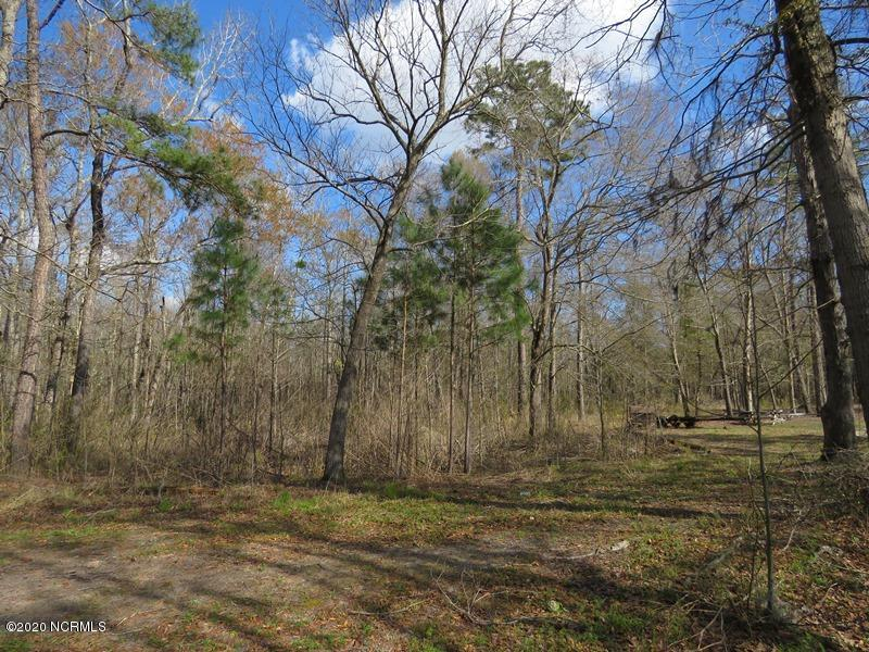 3006 Blue Drive, Supply, North Carolina 28462, ,Residential land,For sale,Blue,100212770