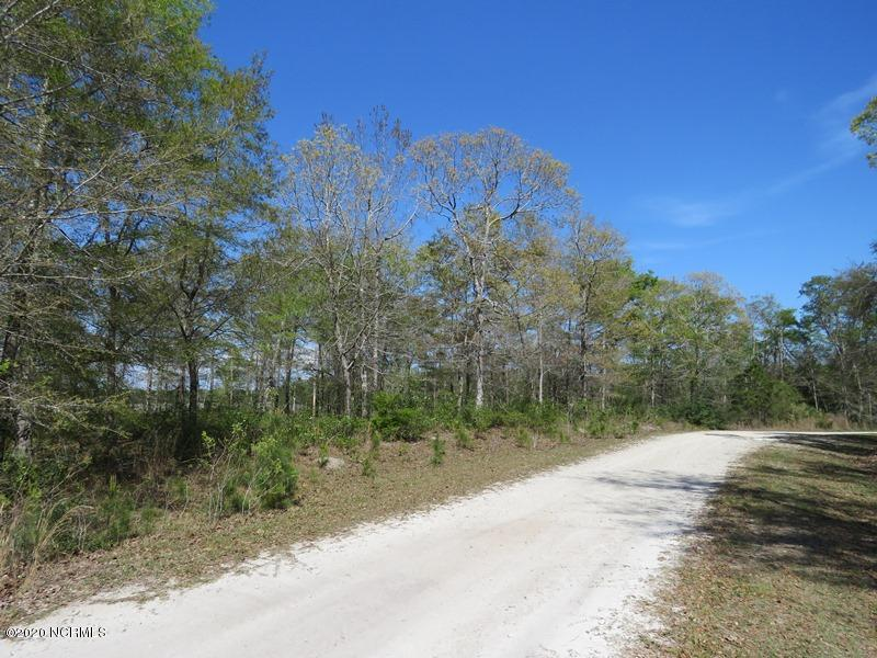 3004 Blue Drive, Supply, North Carolina 28462, ,Residential land,For sale,Blue,100212772