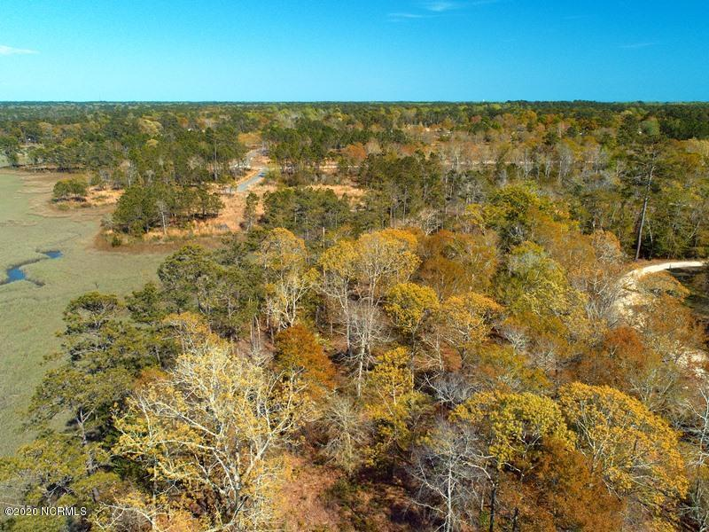 3002 Blue Drive, Supply, North Carolina 28462, ,Residential land,For sale,Blue,100212773