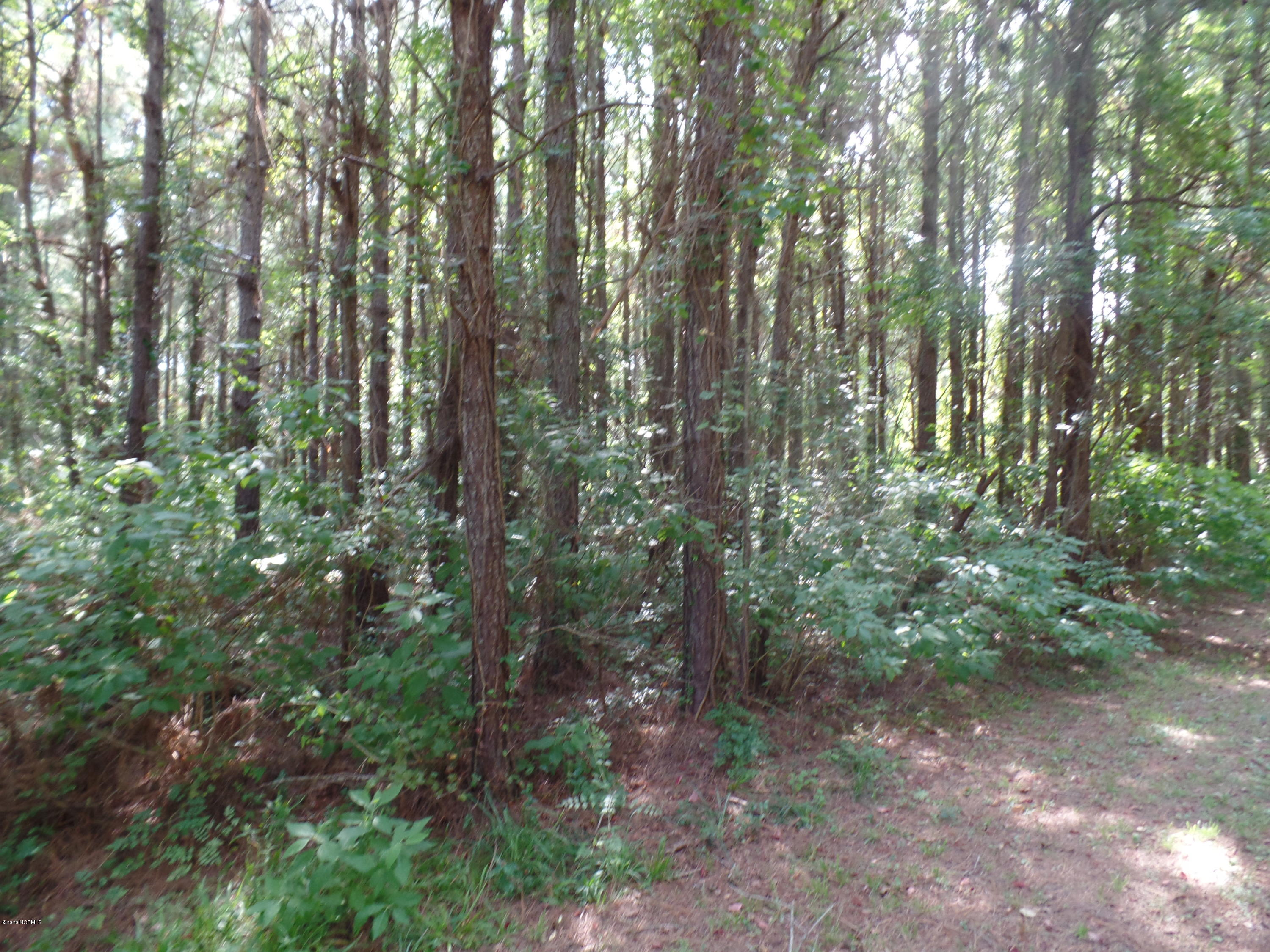 127 Garbacon Drive, Beaufort, North Carolina 28516, ,Residential land,For sale,Garbacon,100215986