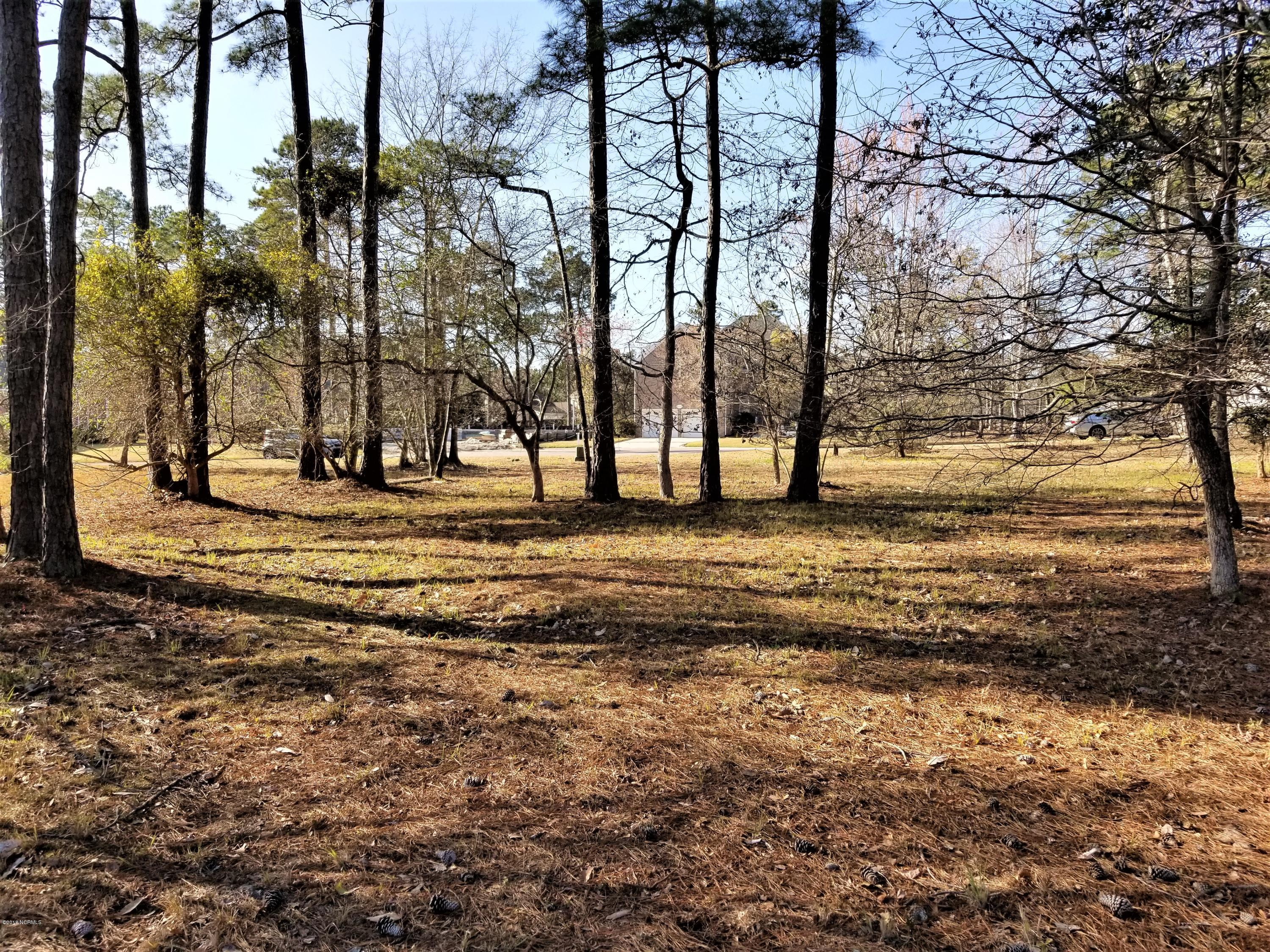 485 Switch Grass Court, Bolivia, North Carolina 28422, ,Residential land,For sale,Switch Grass,100213758