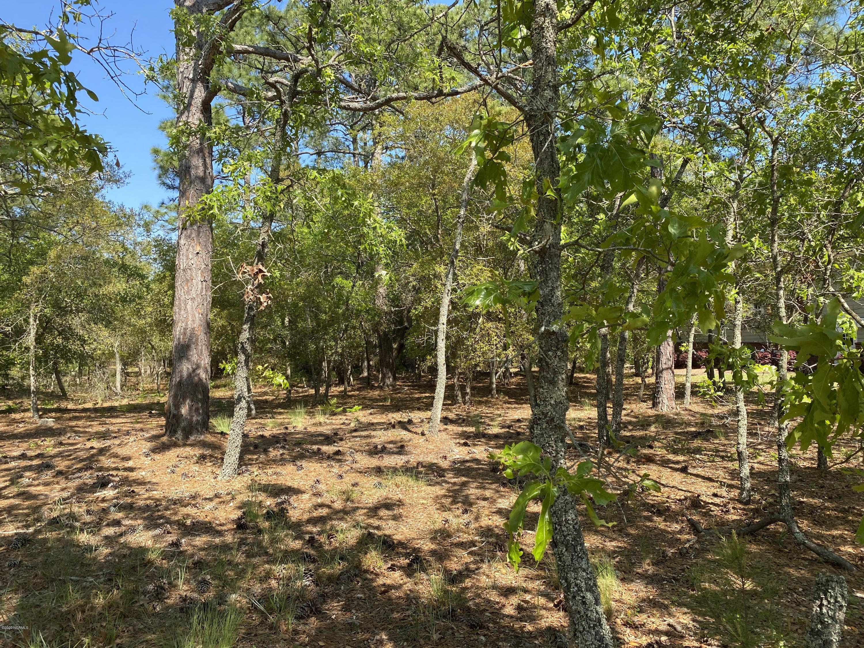 3664 Natchez Street, Supply, North Carolina 28462, ,Residential land,For sale,Natchez,100214650