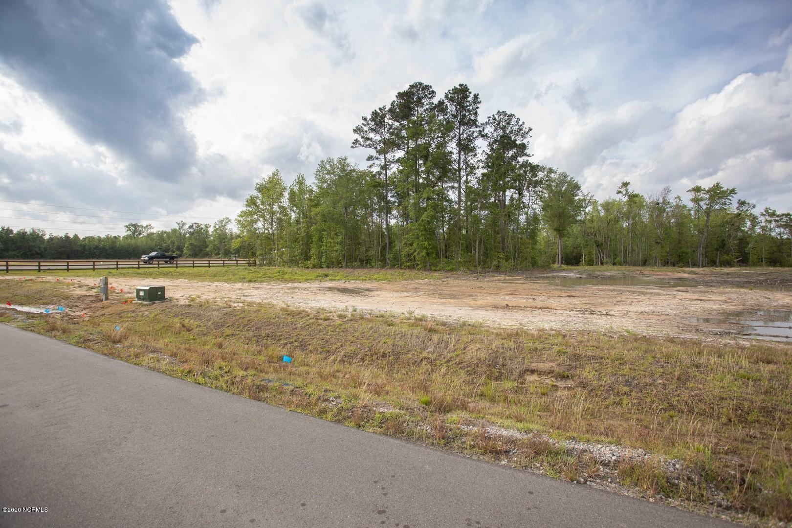 530 Alden Drive, Winnabow, North Carolina 28479, ,Residential land,For sale,Alden,100214876