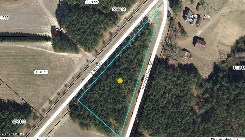 Lot 6 Nc Hwy 581, Bailey, North Carolina 27807, ,Residential land,For sale,Nc Hwy 581,100214903