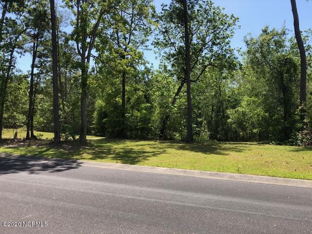 1143 Natal Drive, Bolivia, North Carolina 28422, ,Residential land,For sale,Natal,100204516
