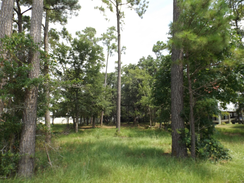 342 Riley Street, Bolivia, North Carolina 28422, ,Residential land,For sale,Riley,100215349