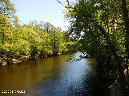 Lot 25 Black River Lane, Harrells, North Carolina 28444, ,Residential land,For sale,Black River Lane,100215435