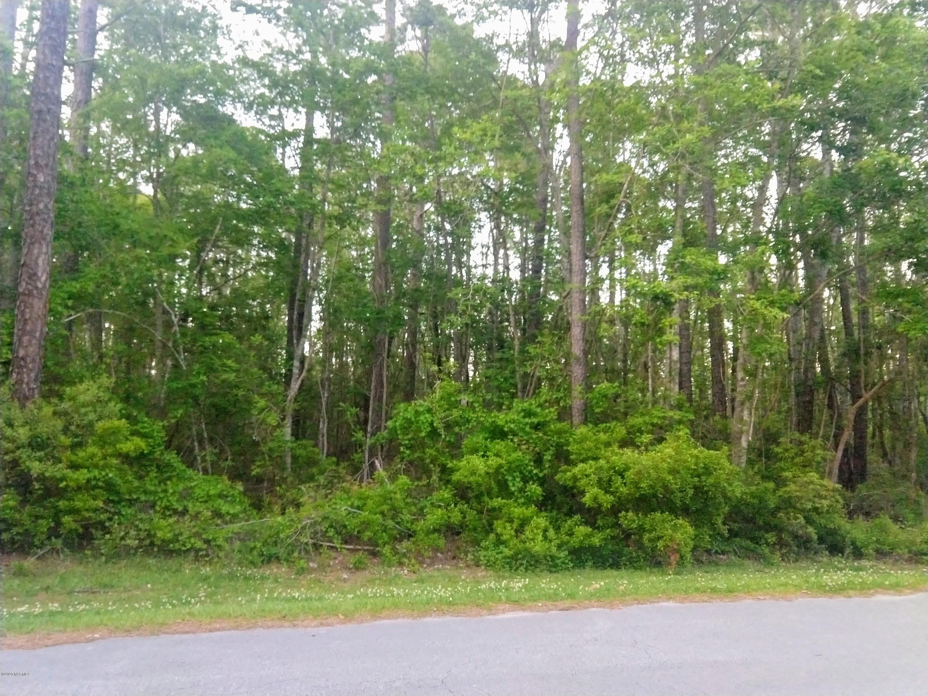 907 Crooked Creek Drive, New Bern, North Carolina 28560, ,Residential land,For sale,Crooked Creek,100216107