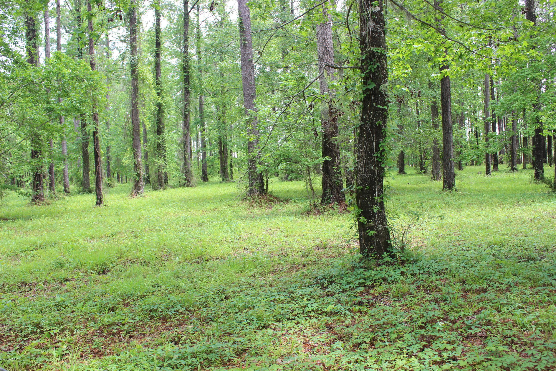 289 Trent Creek Drive, Merritt, North Carolina 28556, ,Wooded,For sale,Trent Creek,100216643