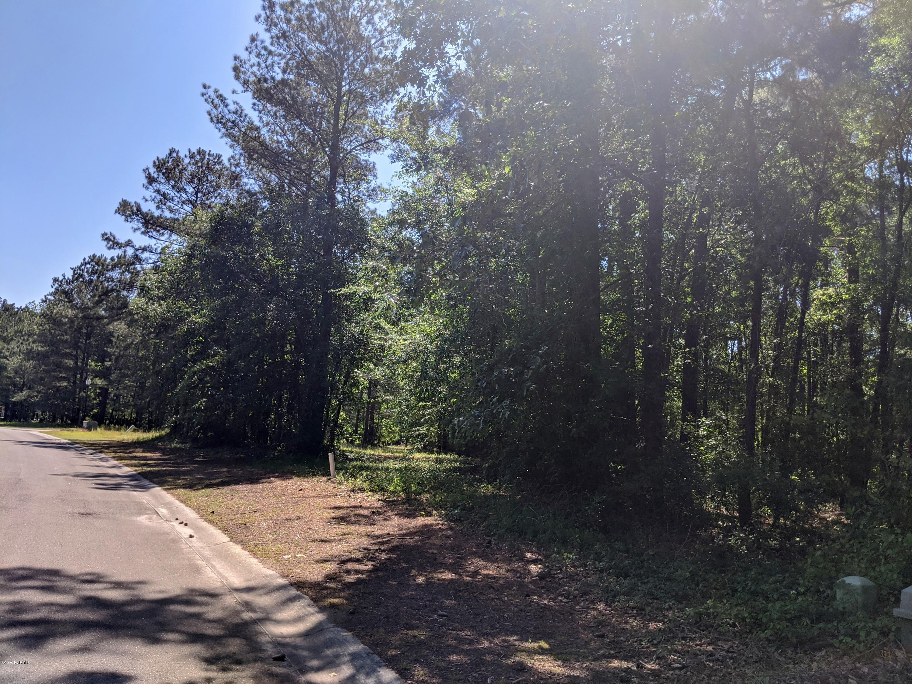 150 Red Berry Drive, Wallace, North Carolina 28466, ,Residential land,For sale,Red Berry,100218521