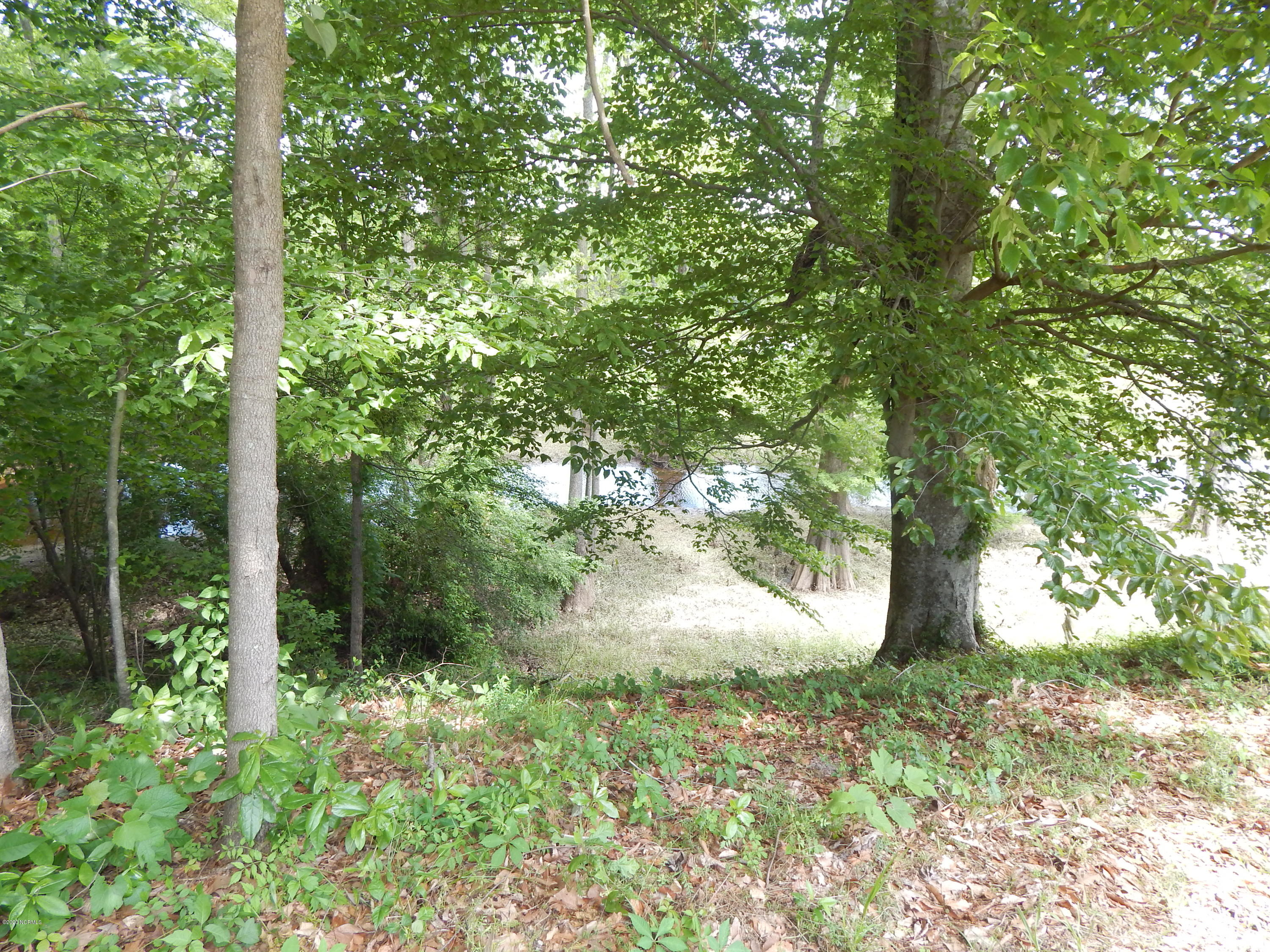 2399 Water View Road, Greenville, North Carolina 27858, ,Residential land,For sale,Water View,100217014