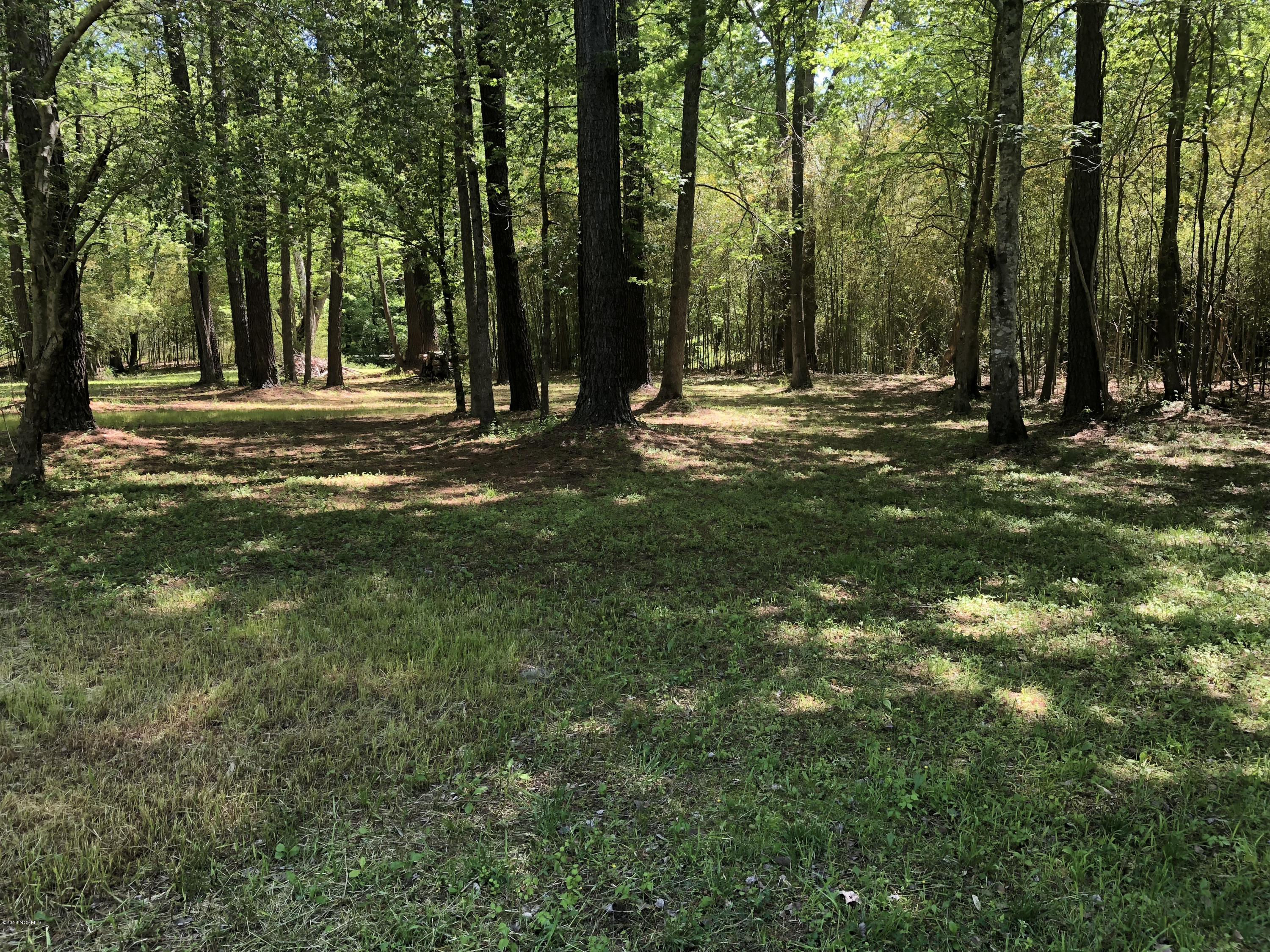 Lot 9 Wood Duck Road, Washington, North Carolina 27889, ,Residential land,For sale,Wood Duck,100217423