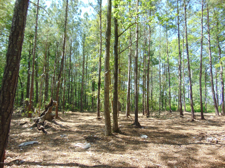 74 Strawhorn Drive, Aurora, North Carolina 27806, ,Residential land,For sale,Strawhorn,100218485