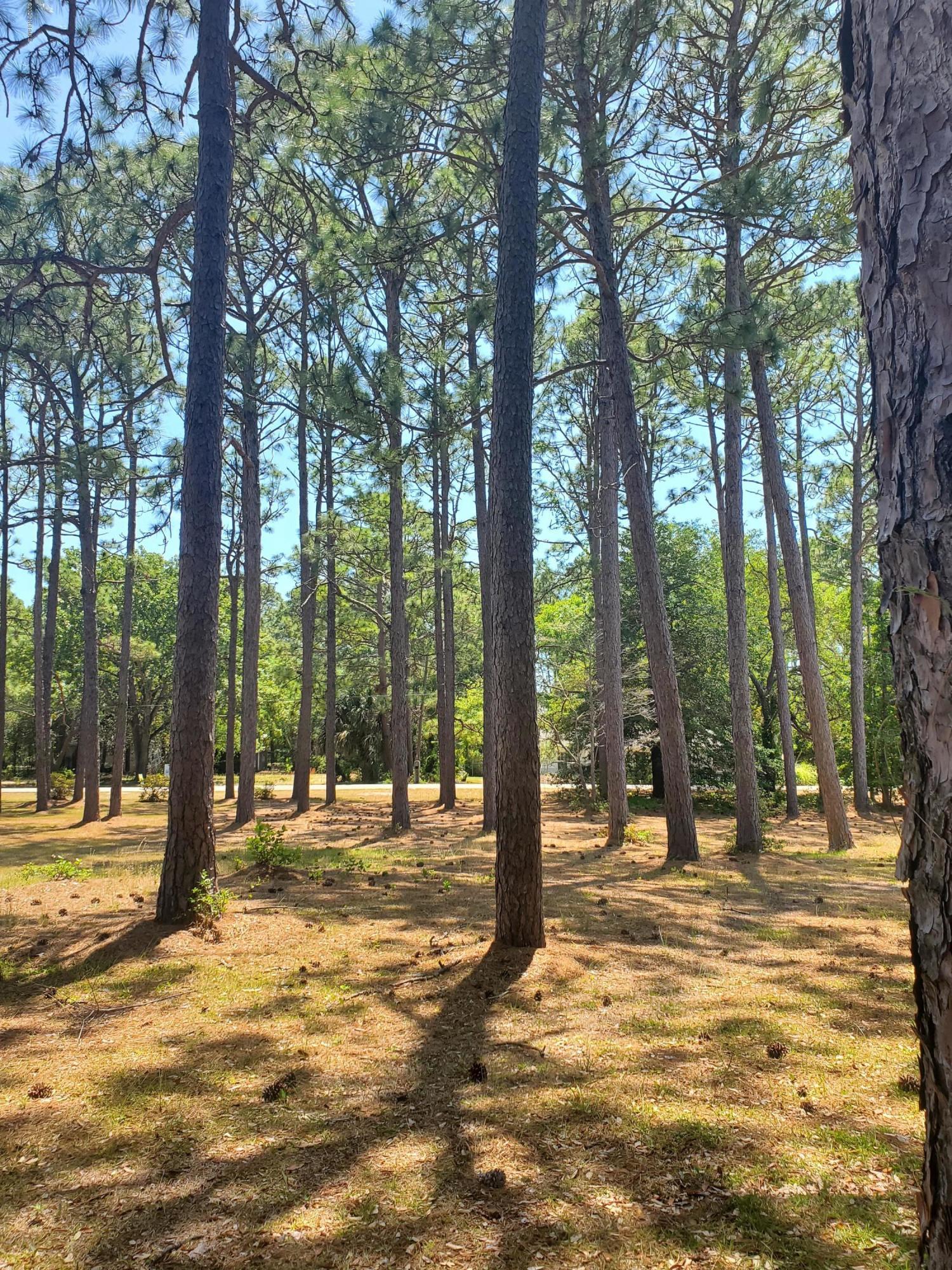 104 Park Avenue, Southport, North Carolina 28461, ,Residential land,For sale,Park,100213955
