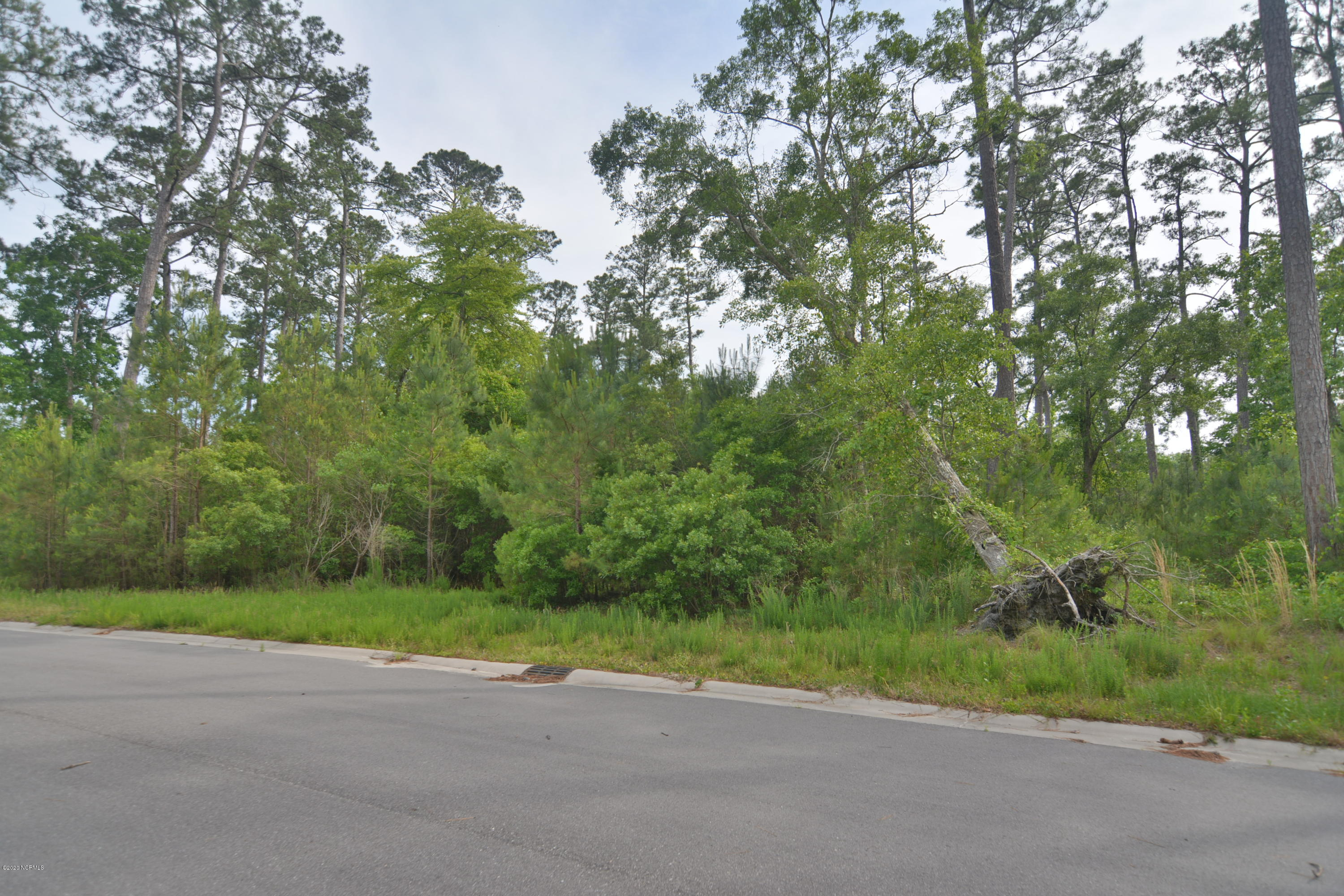 1565 St Lucia Drive, Shallotte, North Carolina 28470, ,Residential land,For sale,St Lucia,100218126