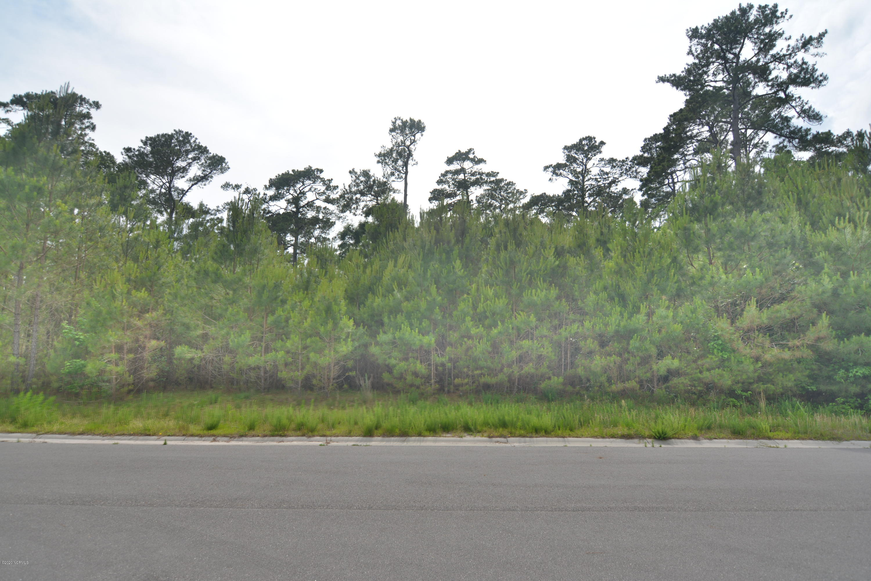 1559 St Lucia Drive, Shallotte, North Carolina 28470, ,Residential land,For sale,St Lucia,100218128