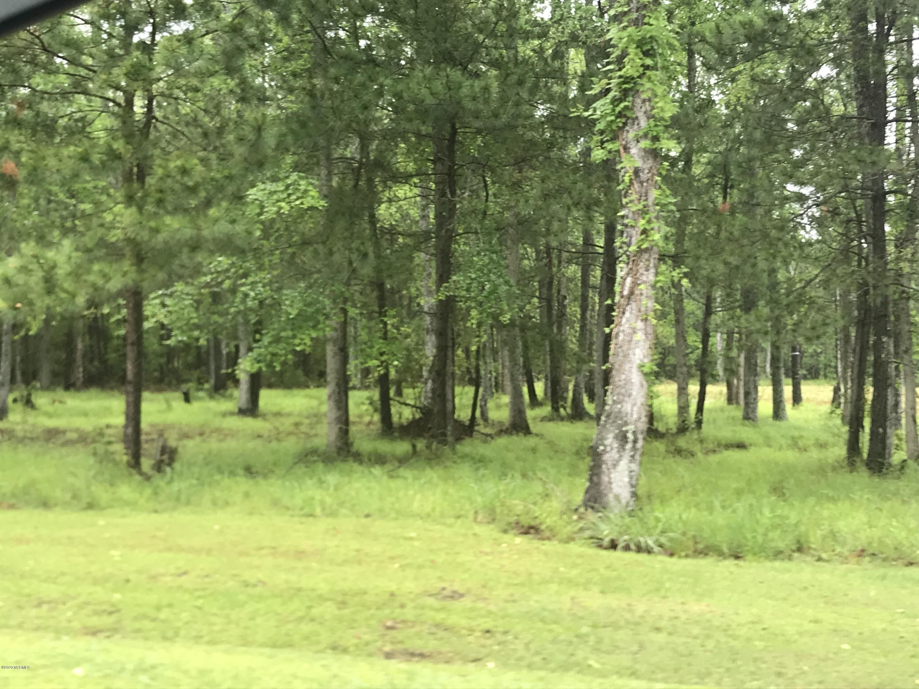Lots 7 &97 Dowry Creek, Belhaven, North Carolina 27810, ,Residential land,For sale,Dowry,100218437