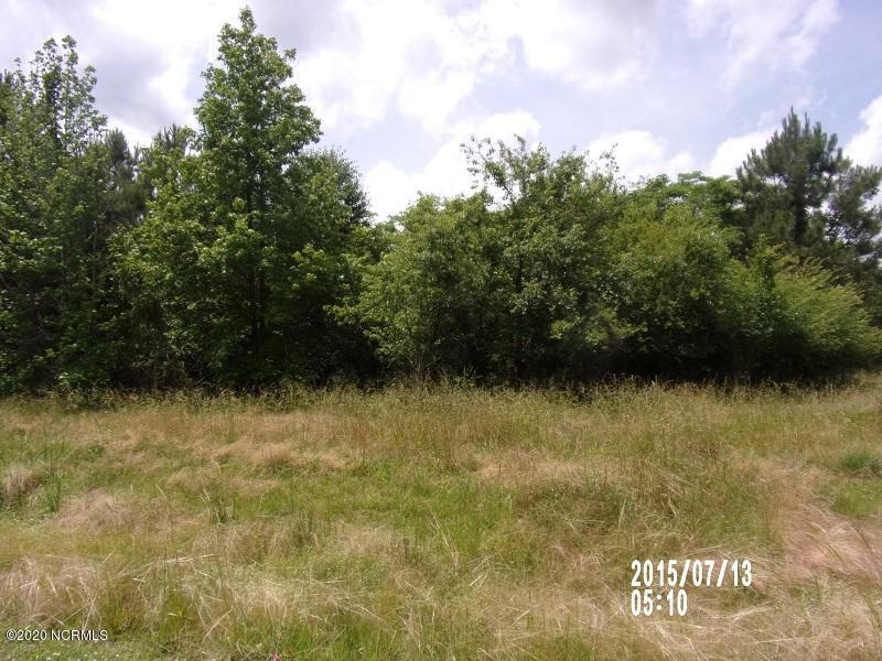 0 Fairfield Drive, Burgaw, North Carolina 28425, ,Residential land,For sale,Fairfield,100218074