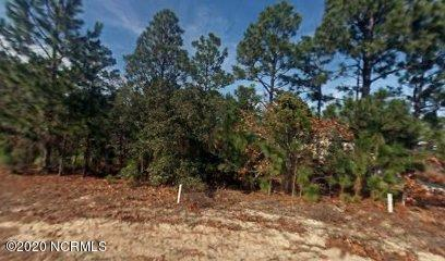9112 Sedgley Drive, Wilmington, North Carolina 28412, ,Residential land,For sale,Sedgley,100219156
