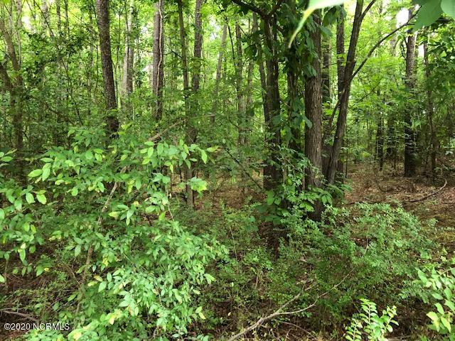 7326 River Glenn Road, Rocky Mount, North Carolina 27803, ,Residential land,For sale,River Glenn,100219318