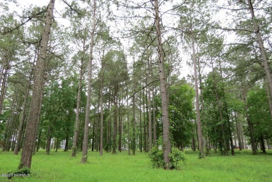 272 Southern Plantation Drive, Oriental, North Carolina 28571, ,Residential land,For sale,Southern Plantation,100186081