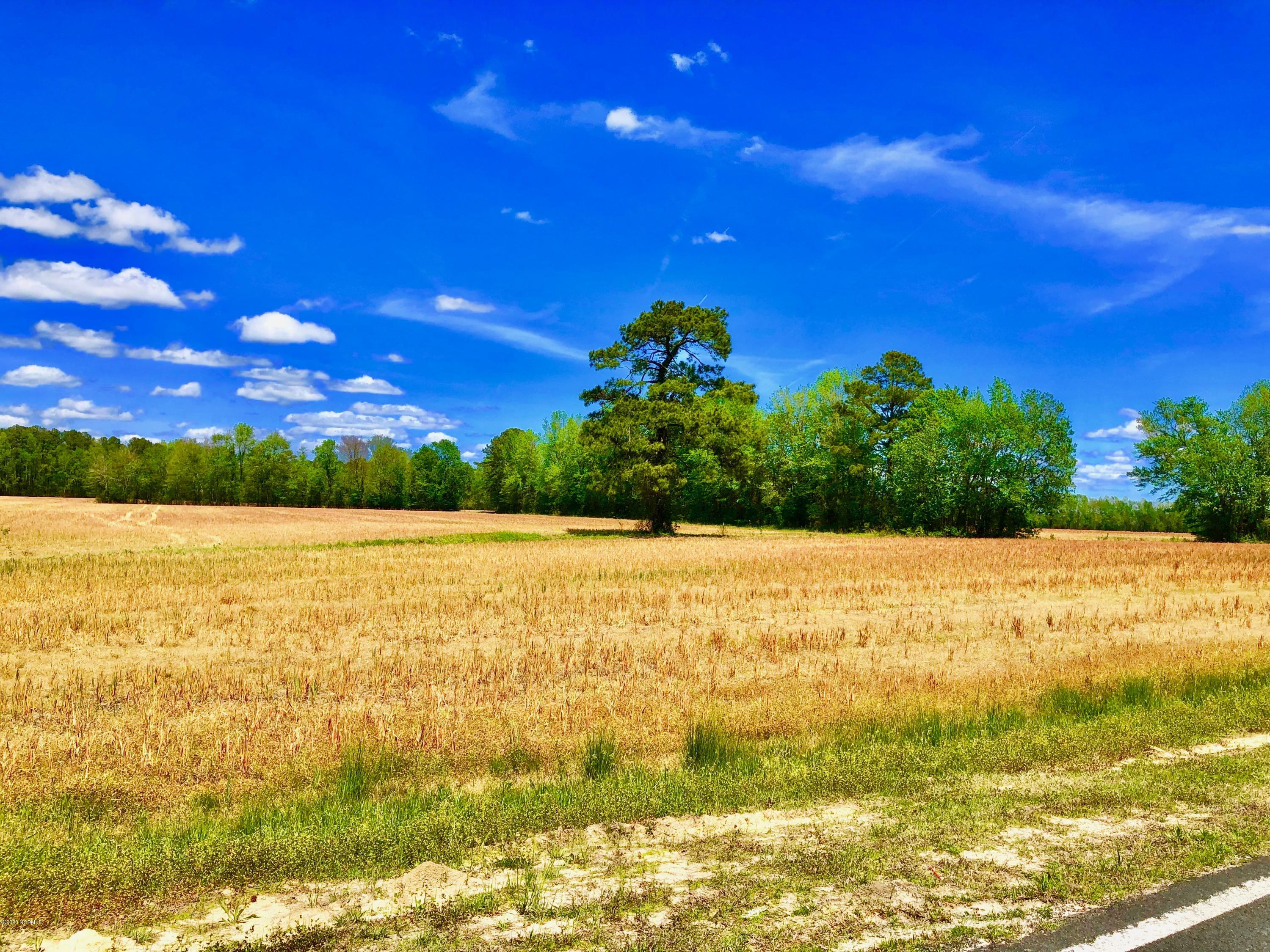 Off State Road 1154, Chocowinity, North Carolina 27817, ,Mixed use,For sale,State Road 1154,100219447