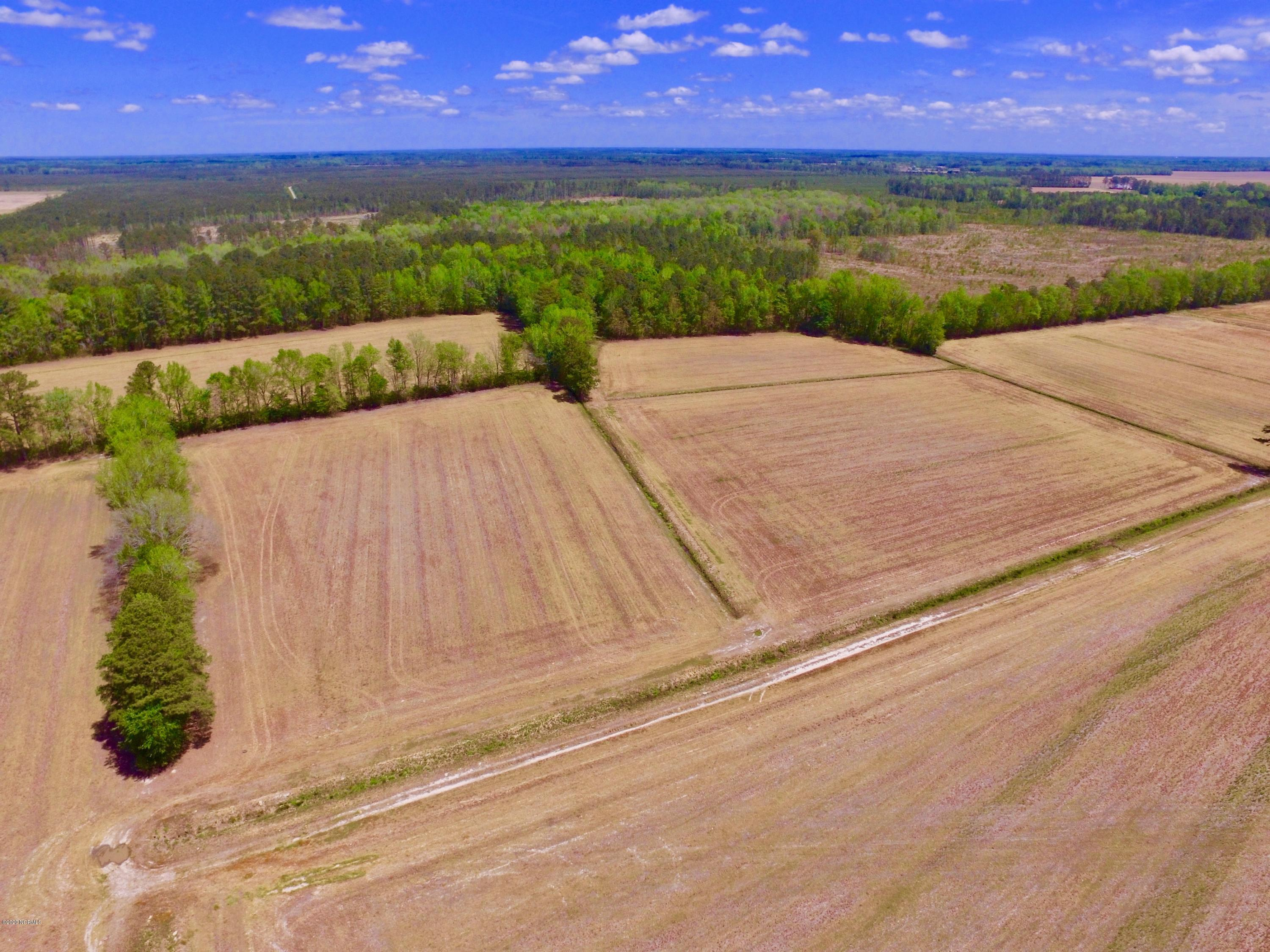 Off State Rd 1154, Chocowinity, North Carolina 27817, ,Mixed use,For sale,State Rd 1154,100219447