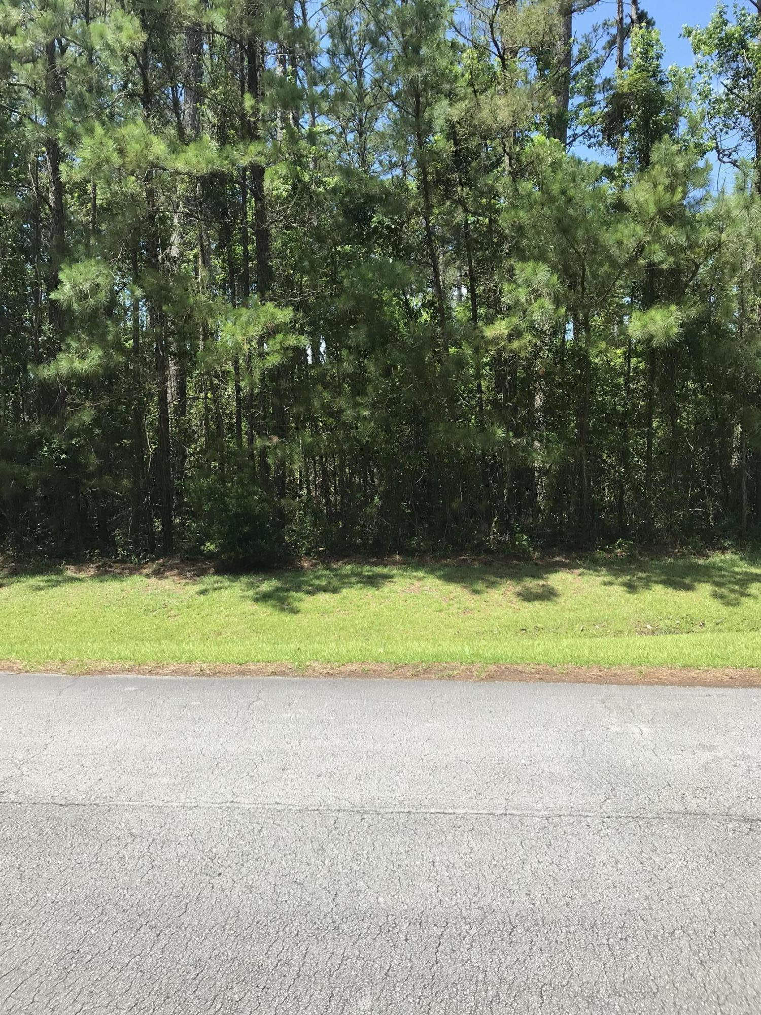 142 Cummins Creek Road, Beaufort, North Carolina 28516, ,Residential land,For sale,Cummins Creek,100220066