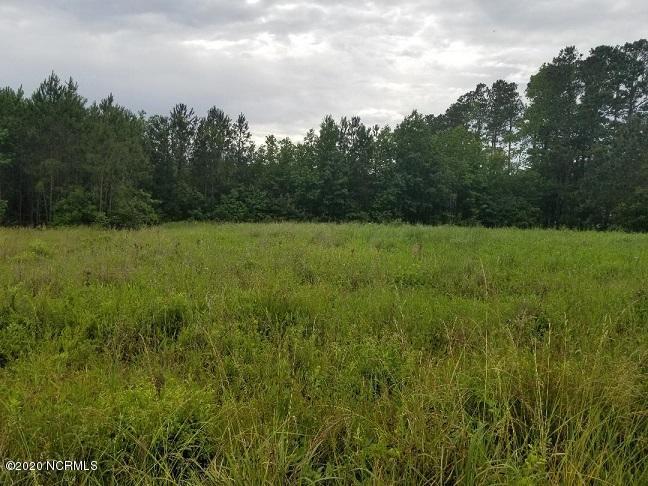 17 17 Kitrell Avenue, Belhaven, North Carolina 27810, ,Residential land,For sale,17 Kitrell Avenue,100220144