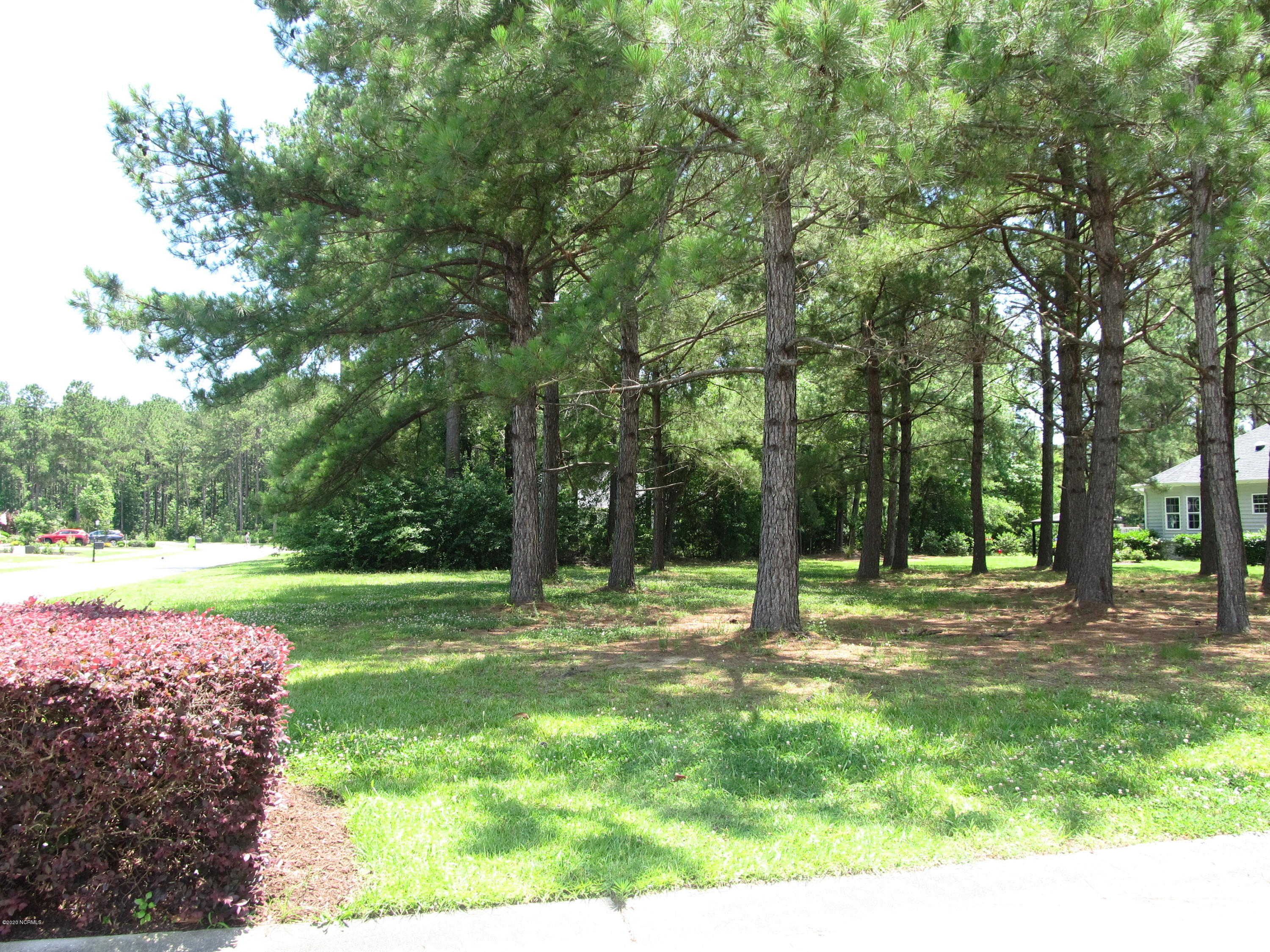 8853 Pickney Place, Calabash, North Carolina 28467, ,Residential land,For sale,Pickney,100220408